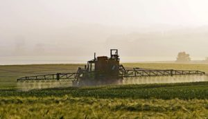 pesticidi nei campi agricoli