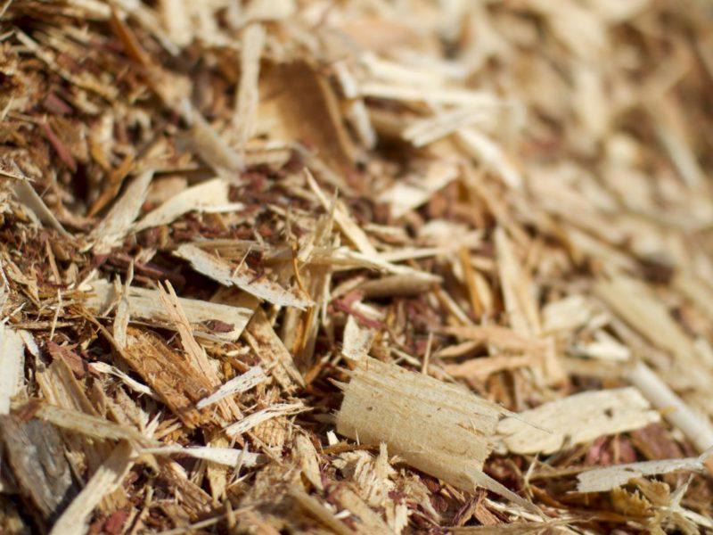 scarti di legno